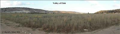Valley of Elah: Battle of David and Goliath